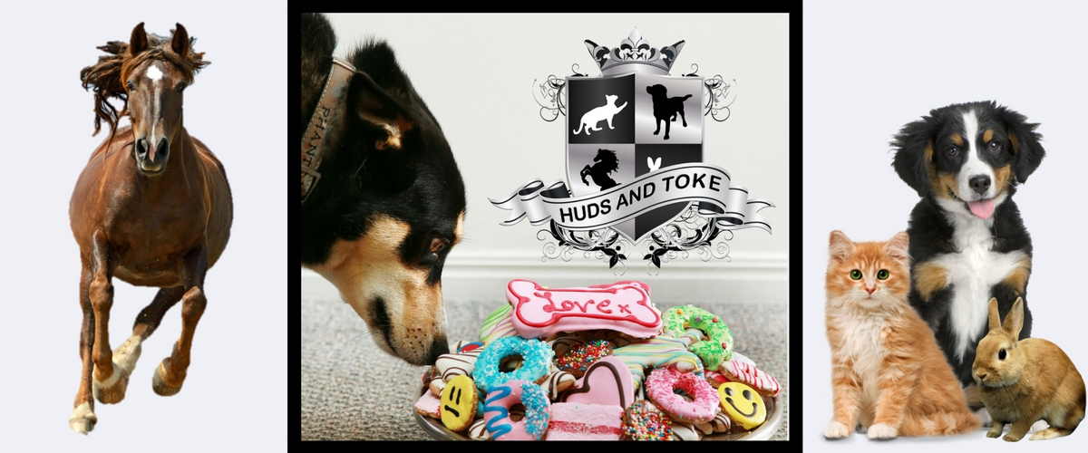 huds-and-toke-dog-treats-horse-treats-pet-treats-banner.jpg